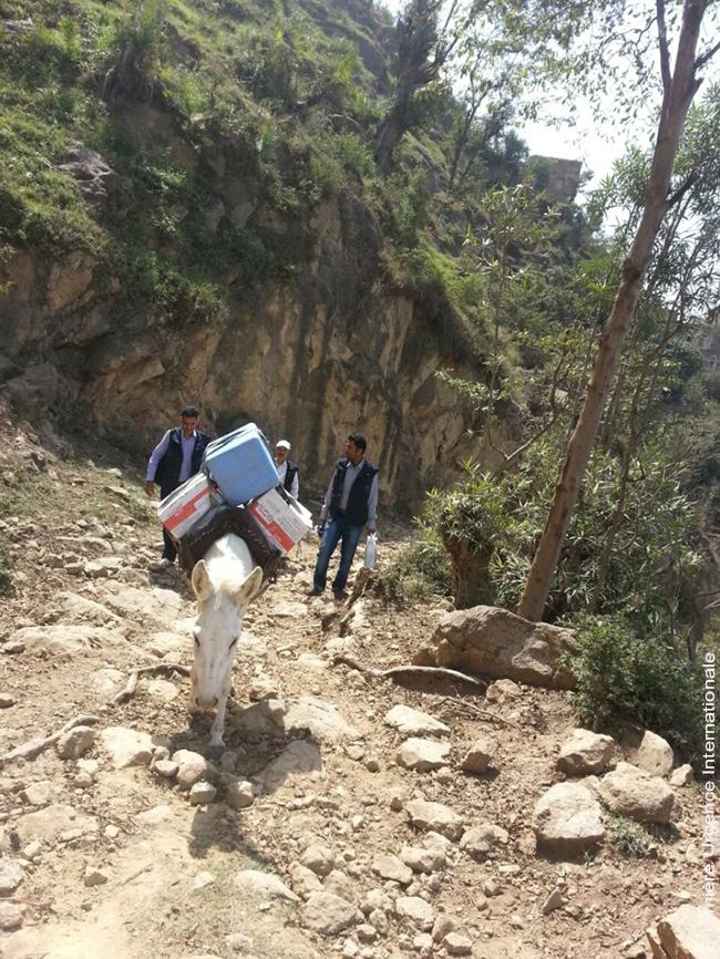 yemen-log2_ok