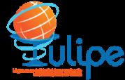 Logo Tulipe