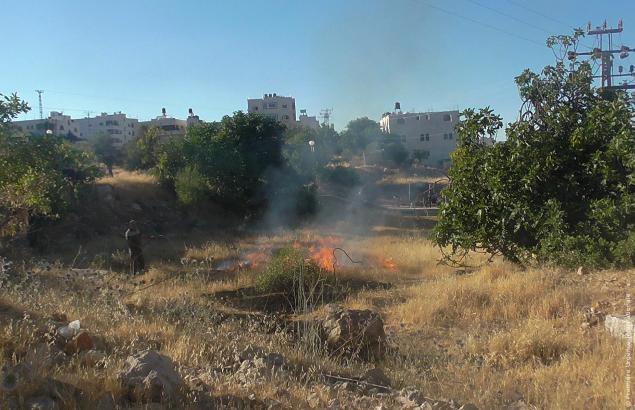 Flammes dans un champ après une attaque