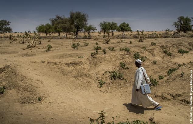 Situation humanitaire au Tchad : l'environnement représente un réel enjeu également