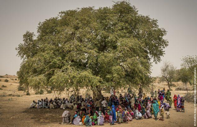 Situation humanitaire au Tchad : Un village se réunit sous un arbre au Tchad où Première Urgence Internationale intervient