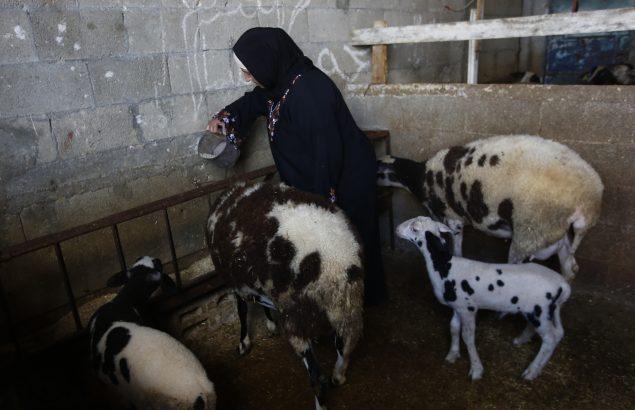 Aysha vit dans la pauvreté extrême à Gaza