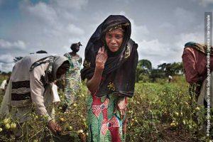 Solidaires jusqu'au sommet avec le Cameroun