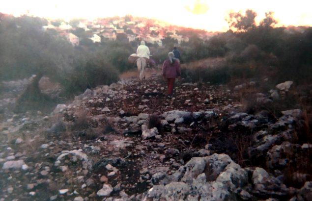 fermier palestinien